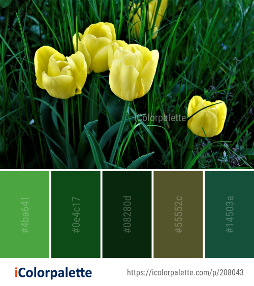 Color Palette Ideas From Flower Plant Yellow Image Icolorpalette